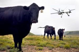 Montana Drone Laws